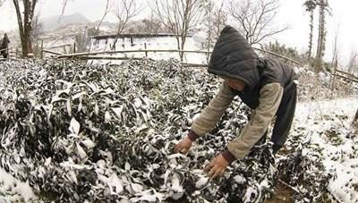 Không khí lạnh tăng cường xuống các tỉnh phía Bắc