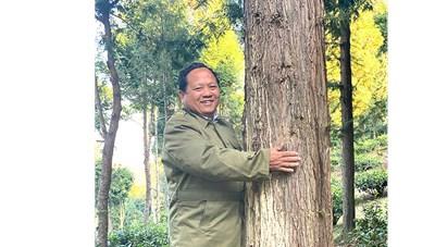 Ông Vừ Vả Chống và kỳ tích trồng rừng pơ mu