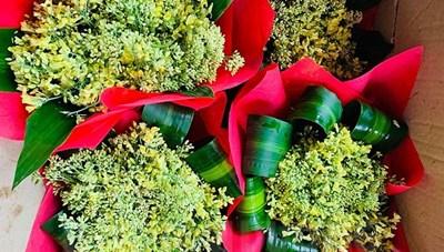 Hải Dương: Những bó hoa súp lơ tươi đẹp cho ngày 8-3