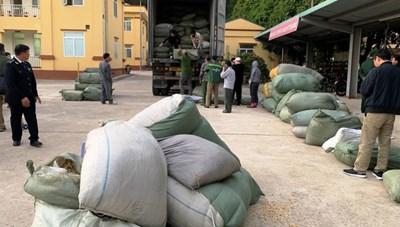 Vụ buôn lậu thuốc bắc: Đề nghị truy tố Phó Chi cục trưởng Hải quan cửa khẩu Chi Ma