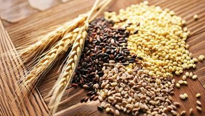 Thực phẩm giàu chất xơ tốt cho hệ tiêu hóa