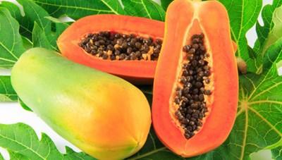 9 loại thực phẩm giúp hấp thụ dinh dưỡng tốt cho sức khỏe
