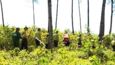 Quảng Bình: Nghiêm cấm đốt thực bìtrong thời tiết nắng nóng