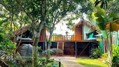 Cuối tuần ghé 3 resort xanh mướt gần Hà Nội giá chưa đến 1 triệu đồng