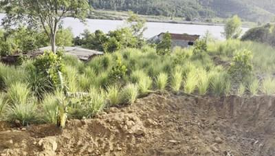 Đà Nẵng: Khai thác đất trái phép dọc cao tốc La Sơn - Túy Loan