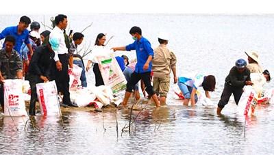 Gia Lai: Thả hơn 80 nghìn con cá giống xuống lòng hồ thủy điện Ka Nak