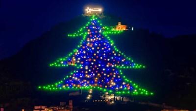 [ẢNH] Chiêm ngưỡng những cây thông Noel tuyệt đẹp trên khắp thế giới