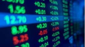 Thị trường chứng khoán ngập trong sắc xanh