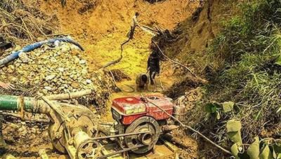 Đắk Nông: Xử phạt các đối tượng khai thác vàng trái phép trên đất rừng
