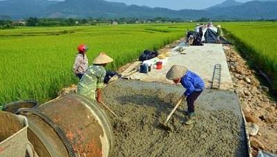 Bình Định: Giám sát việc thực hiện Chương trình mục tiêu quốc gia về xây dựng NTM