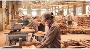 Tiềm ẩn rủi ro với ngành gỗ