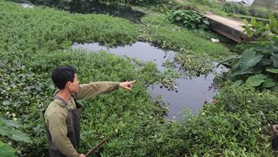 Vụ khai thác đất trái phép ở Đồng Tân (Hữu Lũng, Lạng Sơn): Có dấu hiệu bao che, không xử lý