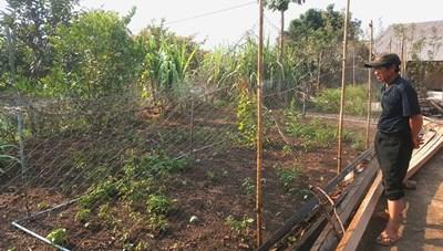 Chủ động nước trong mùa khô