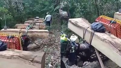 Kon Tum: Tóm gọn 12 đối tượng đang khai thác, vận chuyển gỗ lậu