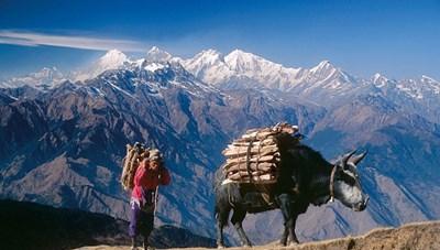 Gửi về từ Nepal