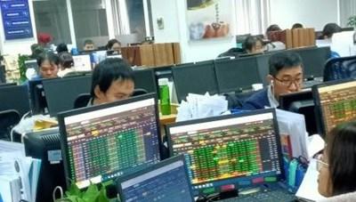 Sắc xanh tràn ngập thị trường chứng khoán