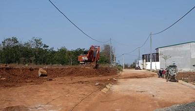 Lý Sơn (Quảng Ngãi): Chuyển nhượng đất nông nghiệp diễn biến phức tạp