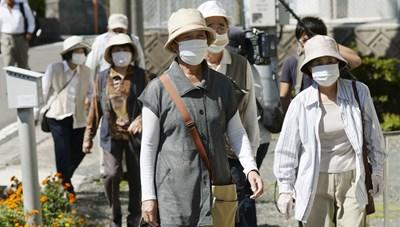 Dị ứng phấn hoa khiến Nhật Bản mất 2 tỷ USD mỗi năm