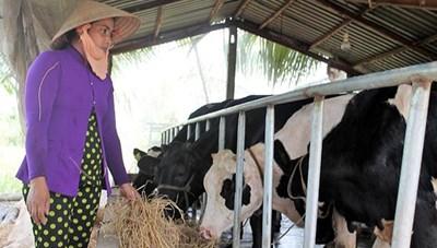 Đồng bào Khmer nỗ lực xây dựng nông thôn mới