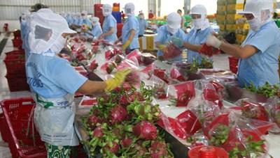 Nông sản Việt với nỗi lo mới