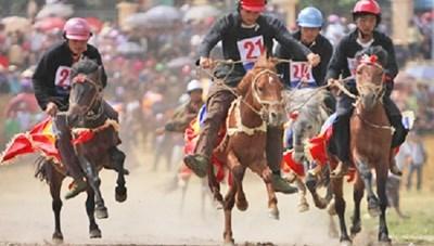 Giải đua ngựa truyền thống huyện Bắc Hà (Lào Cai): 106 con ngựa tham giađua và diễu hành