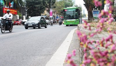 Hà Nội dừng triển khai tuyến buýt nhanh BRT 02 Kim Mã-Hòa Lạc