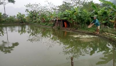 Lục Yên (Yên bái): Nhân lên điểm sáng khu dân cư văn hóa