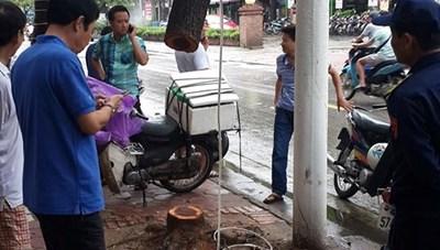 Một cây sưa đỏ bị cưa trộm trong đêm mưa bão