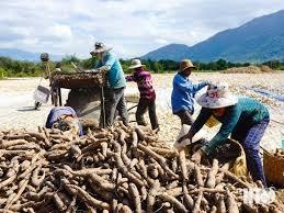Ninh Thuận: Tập trung nguồn lực cho công tác giảm nghèo bền vững