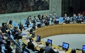 Hội đồng Bảo an Liên hợp quốc thảo luận về 'Tình hình Mali'