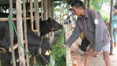 Sóc Trăng: Tỷ lệ hộ nghèo trong đồng bào Khmer giảm đáng kể