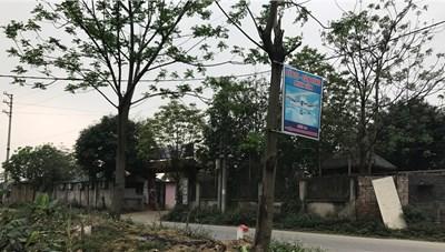 Thạch Thất - Hà Nội: Đất nông nghiệp thành hàng quán