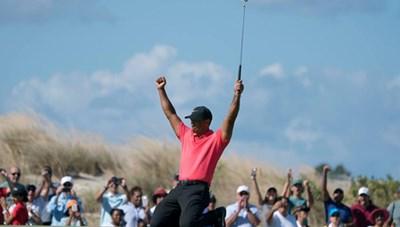 Tiger Woods nhận nhiều lời khen khi đánh bại nửa số golfer hay nhất thế giới