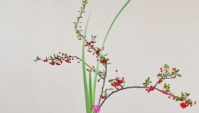 Triển lãm Nghệ thuật cắm hoa truyền thống Nhật Bản