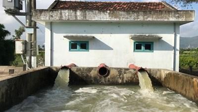Bình Định: Hơn 5 nghìn ha đất bỏ trống, không thể sản xuất do thiếu nước