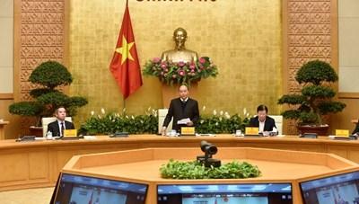Thủ tướng: Phải chốt cứng diện tích trồng lúa và sản lượng lương thực hằng năm