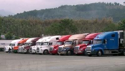 Xuất khẩu hàng hóa ứng phó với nCoV