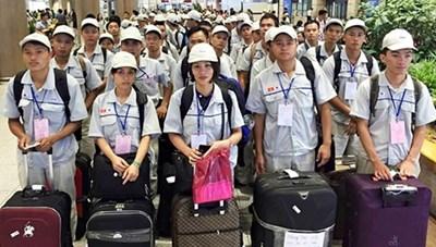 Cảnh báo lừa đảo đi lao động Nhật Bản  bằng 'visa tị nạn'