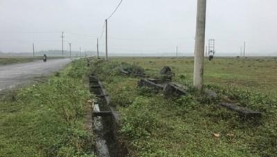 Đầu tư gần 57 tỷ đồng làm hạ tầng để trâu bò gặm cỏ