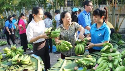 Giải cứu nông sản: Trông vào sức mạnh kinh tế tập thể