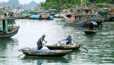 Hỗ trợ năng lượng xanh và nước sạch cho người dân làng chài