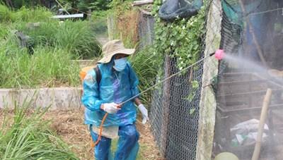 Ngăn chặn dịch cúm A/H5N6 có thể lây lan sang người