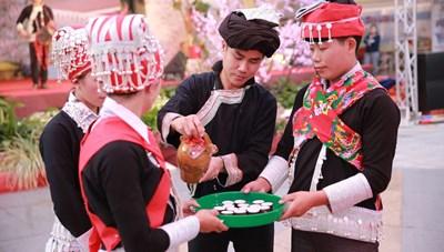 Ngày hội văn hoá dân tộc Dao toàn quốc