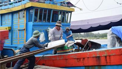 Ngư dân Quảng Ngãi ra khơi đầu năm mới