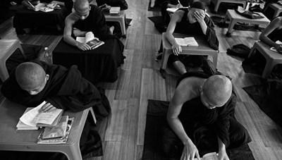 Nhiếp ảnh gia Việt Nam nhận bằng danh dự cuộc thi ảnh quốc tế