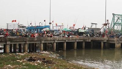 Quảng Trị: Các khu neo đậu tránh bão chưa đáp ứng yêu cầu