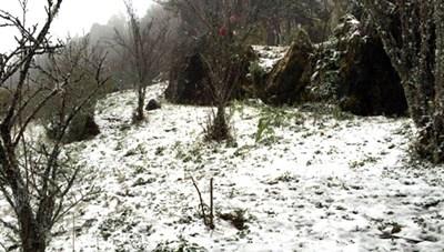 Tuyết rơi ở Sapa và những cảm xúc trái ngược