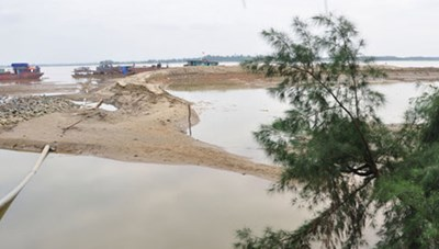 Từ hút trộm cát đến hủy hoại đất đai