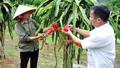 Quảng Yên (Quảng Ninh): Đánh giá sự hài lòng của người dân về nông thôn mới