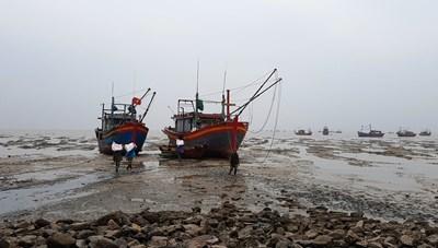 Thanh Hóa: Tàu hàng đâm tàu cá, 7 ngư dân gặp nạn